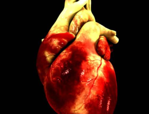 Взаимосвязь потери зубов и повышенного риска развития болезней сердца и сосудов в среднем возрасте
